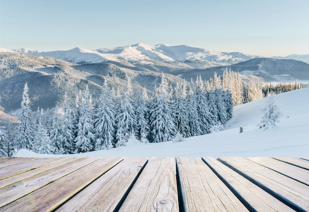 Winter landscape. in anticipation of the holiday. dramatic wintry scene. carpathian Premium Photo
