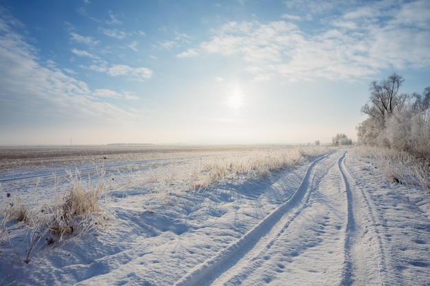 Winter landscape field with road and sun over horizon Premium Photo