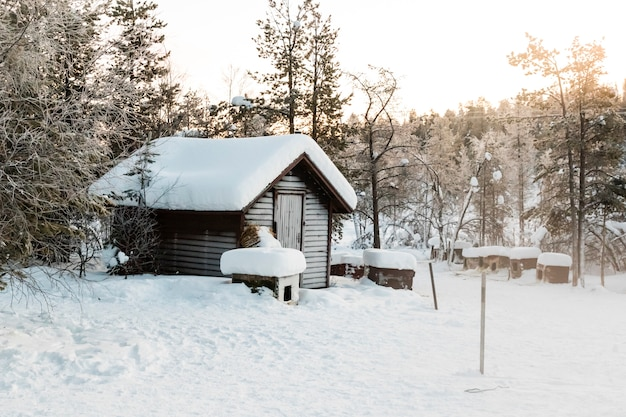 Winter Landscape In Kiruna Lapland Sweden Premium Photo