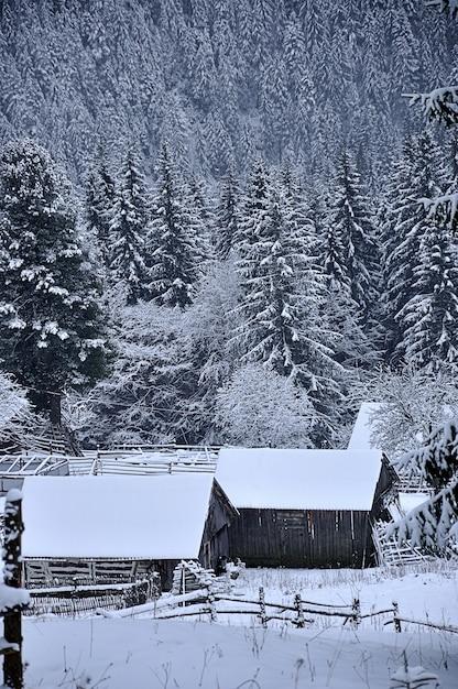 山の冬の風景 Premium写真