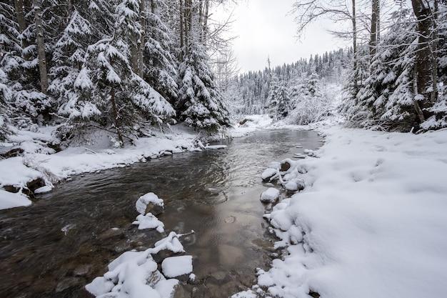 冬の川の風景 Premium写真