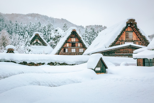 Winter snow shirakawa go village in japan Premium Photo