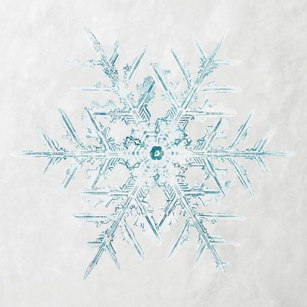 겨울 눈송이 크리스마스 장식 매크로 사진, Wilson Bentley의 사진 리믹스 무료 사진