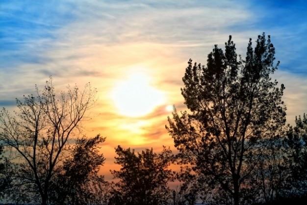 Зимний закат Бесплатные Фотографии