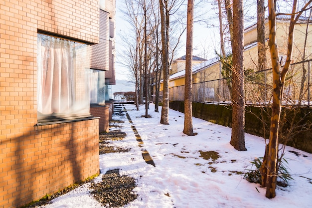 Winter weather, beautiful snow nature landscape with sun shining through trees in hotel at home and resort of yamanakako, yamanashi japan. coldest season of year in polar and temperate zones concept Premium Photo
