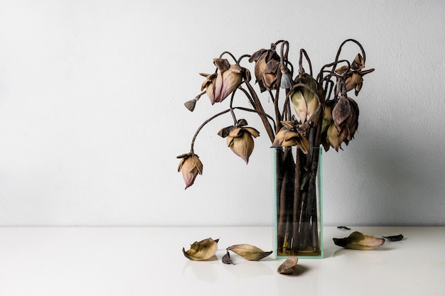 Withered Lotus Flowers In A Glass Vase On Table Photo Premium Download