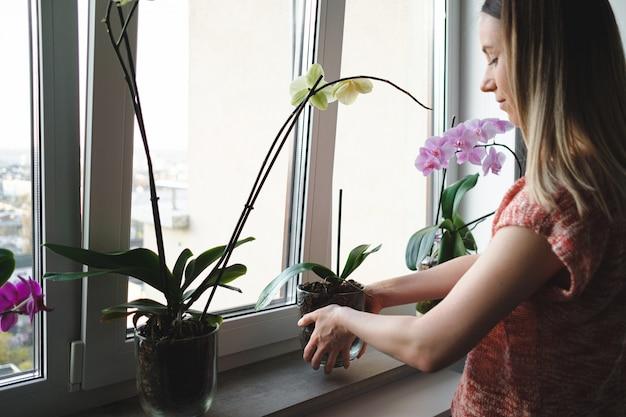 家の中で花を生ける女性 無料写真