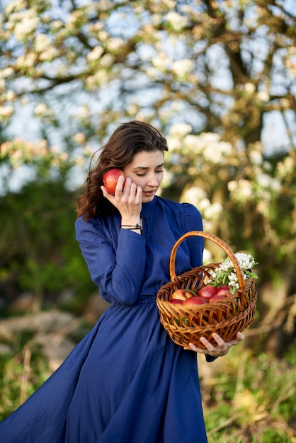 Woman in a blue dress is standing in a blooming garden. the woman has a basket of apples in her hands. the garden is covered with white flowers. Premium Photo