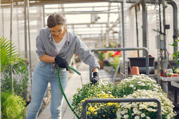 Woman in a blue shirt pours flowerpots Free Photo