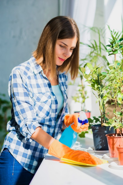 Woman cleaning window sill surface with napkin near the potted plant Free Photo