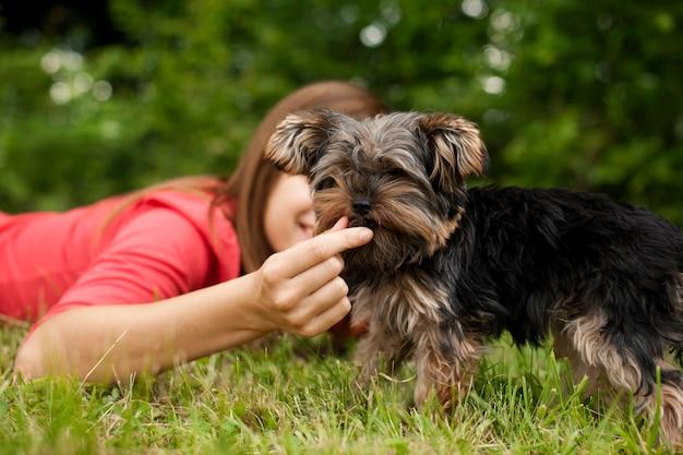 Woman feeding puppy Free Photo