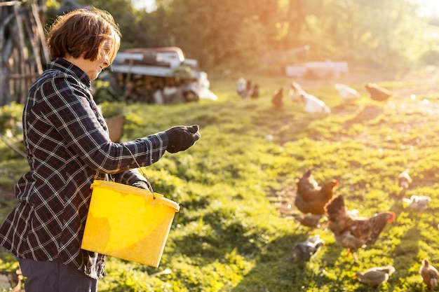鶏に餌をやる女 無料写真