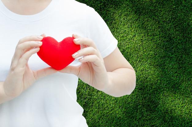 豪華な赤いハートを持つ女性の手は彼女の胸、バレンタインデーのコンセプト、愛の心、左を保護し、ヘルスケア Premium写真