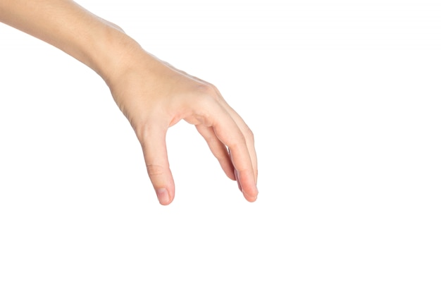 Woman hand show picking or take something gesture isolated Premium Photo