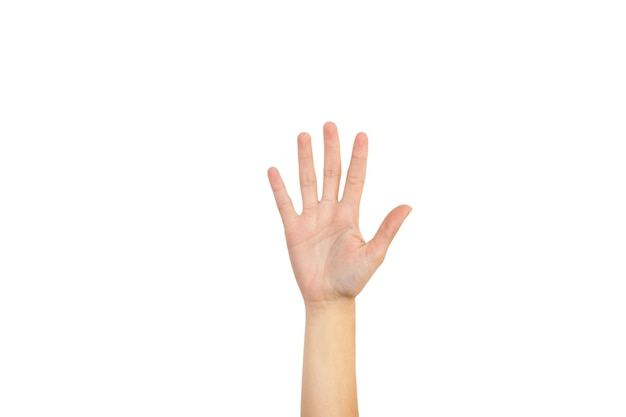 Woman hand showing her palm and five fingers on a white background Premium Photo