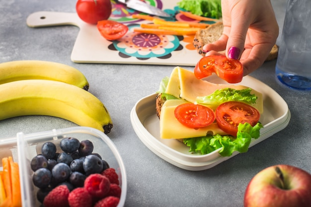 Woman hands are making vegetable sandwich for lunch box Premium Photo