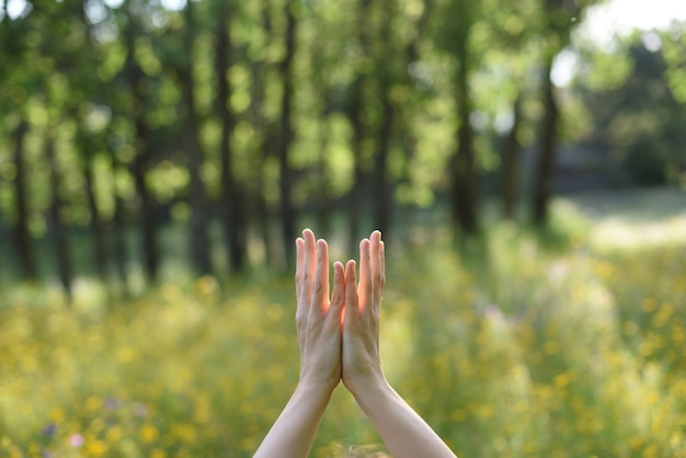 屋外でヨガをしている自然に関連して女性の手 Premium写真