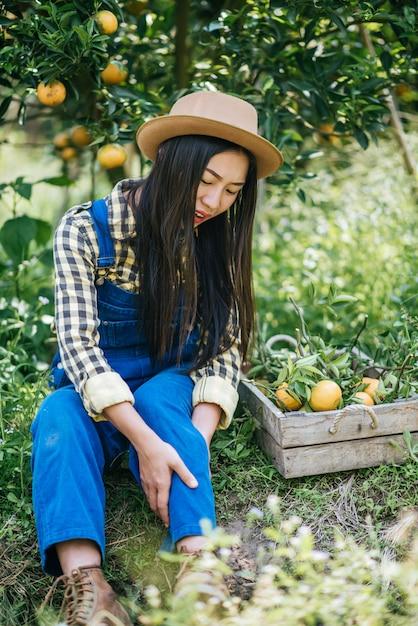 Woman havesting orange plantation Free Photo