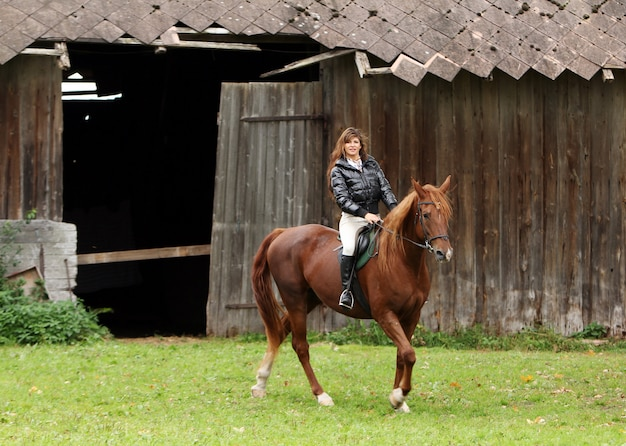 Woman and her brown horse Free Photo