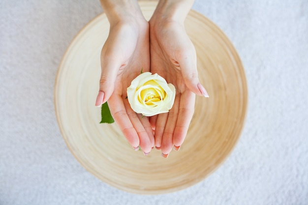Woman hold beautiful flower in her hands Premium Photo
