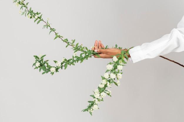 Женщина держит ветку цветка снежной ивы Бесплатные Фотографии