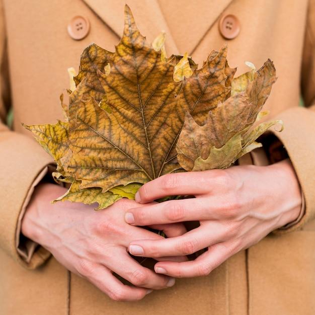 Женщина, держащая осенние листья Бесплатные Фотографии