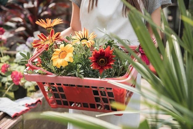 Woman holding container with yellow and red flowers Free Photo