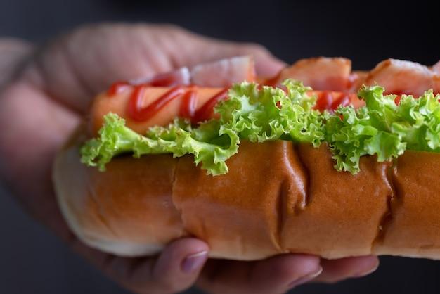 Woman holding hot dog Premium Photo
