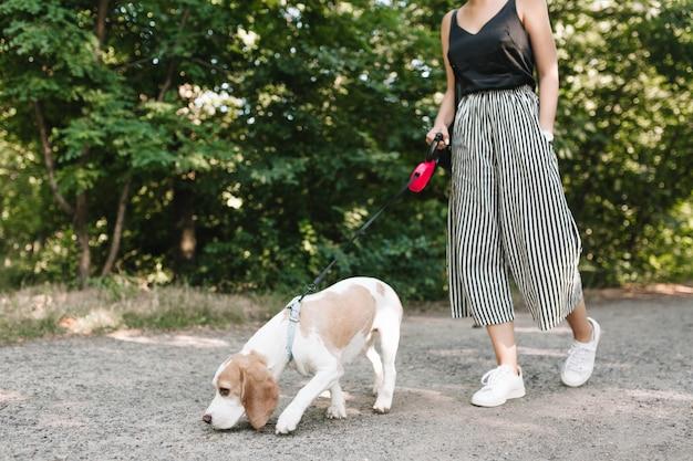 彼女のペットが道をたどっている間公園を歩いているヴィンテージの縞模様のズボンの女性 無料写真