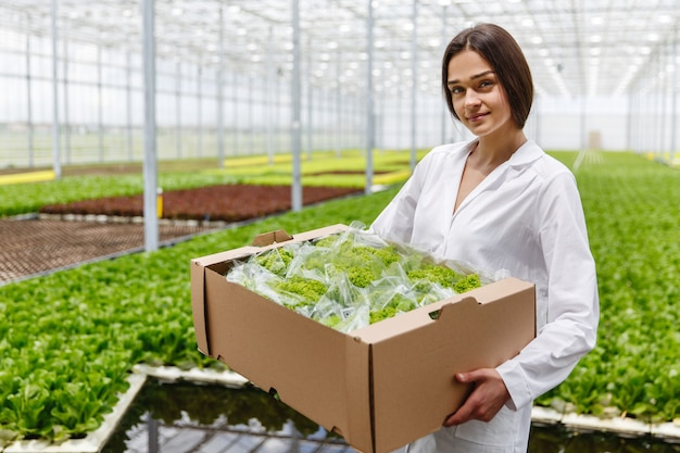 Woman in a laboratory robe holds large box with green salad standing in a greenhouse Free Photo