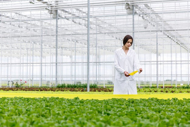 Woman in a laboratory robe with green salad standing in a greenhouse Free Photo