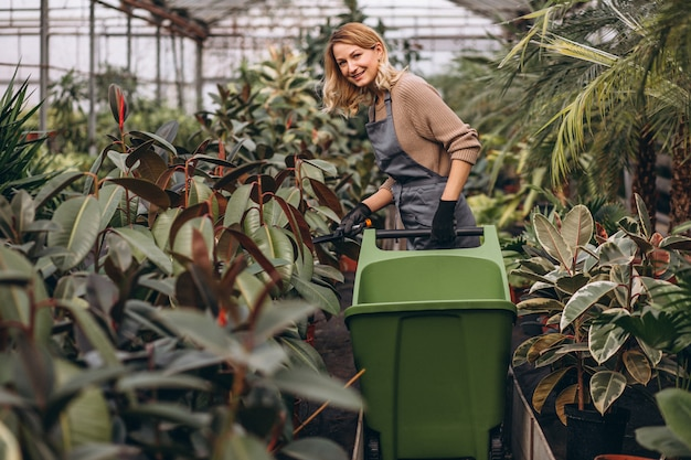 Woman looking after plants in a greenhouse Free Photo