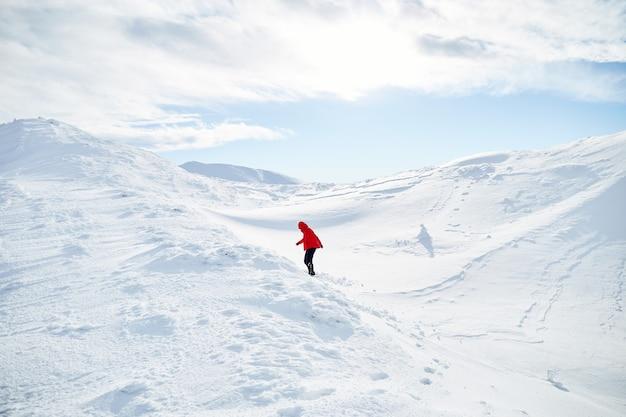 언덕에 걷는 여자 산악인 신선한 눈으로 덮여있다. 카르 파티 아 산맥 프리미엄 사진