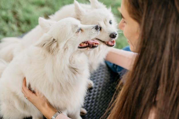 Женщина гладит очаровательных собак Бесплатные Фотографии