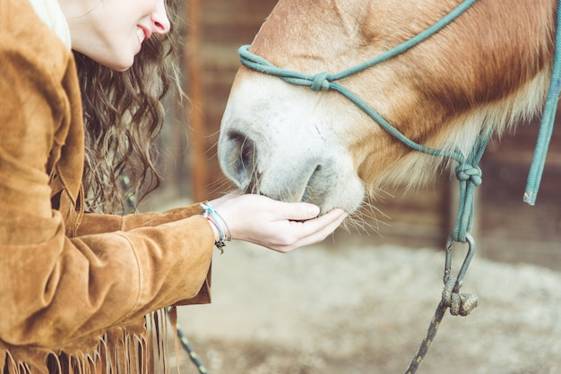 Woman petting her horse. close up on hands and horse mouth Premium Photo