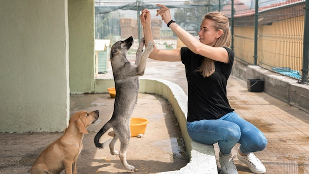 쉼터에서 사랑스러운 강아지와 함께 재생하는 여자 프리미엄 사진