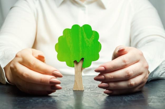 女性はミニチュアの緑の木を保護します。 Premium写真