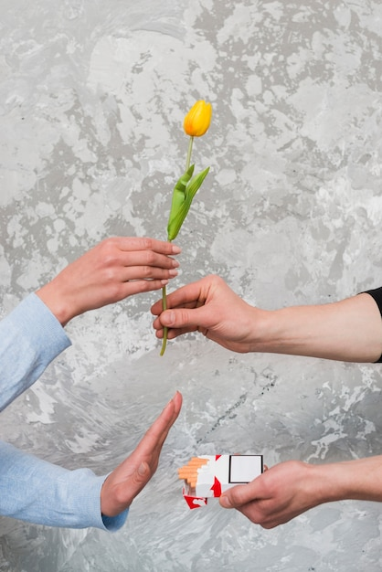 Woman's hand accepting yellow tulip and rejecting pocket of cigarette from man Free Photo
