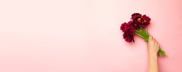 Woman's hands holding bouquet of tulips on pink horizontal background. Premium Photo