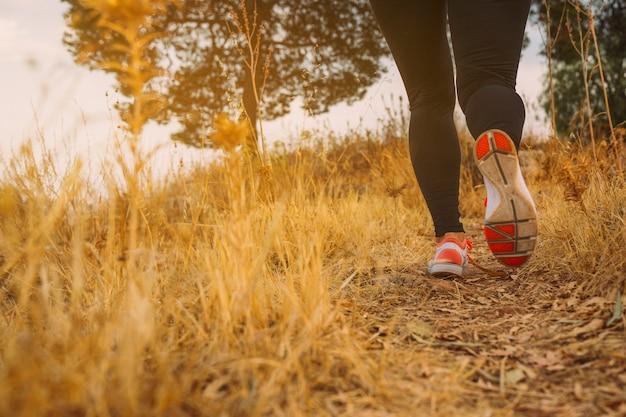午前中に走っている女性の足 無料写真
