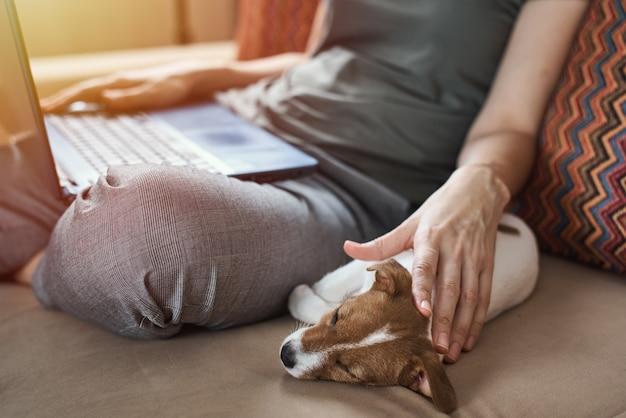 子犬のジャックラッセルテリアと一緒にソファに座っている女性 Premium写真