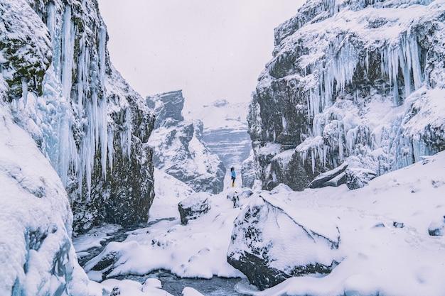 雪に覆われた崖の上に立っている女性 無料写真