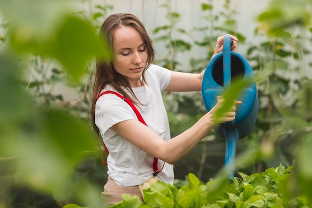 Woman taking care of plants in a greenhouse Free Photo