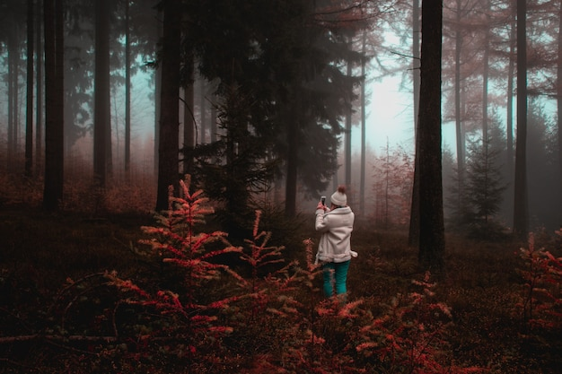 Женщина фотографирует дерево в лесу Бесплатные Фотографии