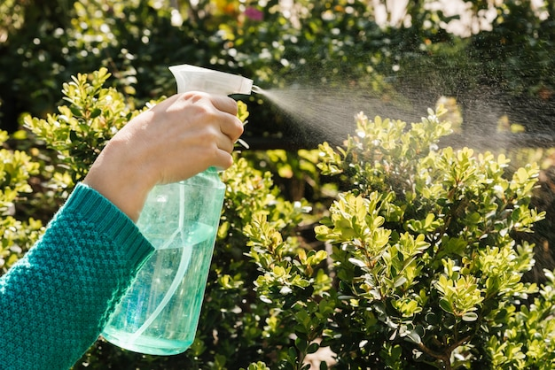 Woman watering plants with spray bottle Free Photo