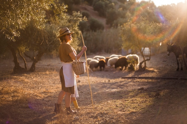 d3a903d43 Woman wearing hat holding stick herding sheep in the farm Photo ...