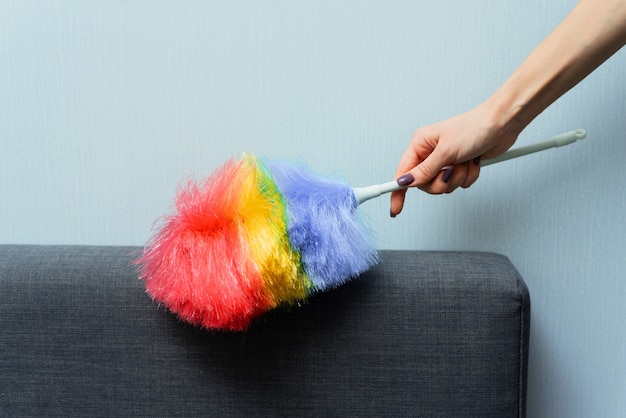A woman wipes the dust on the back of the sofa Premium Photo