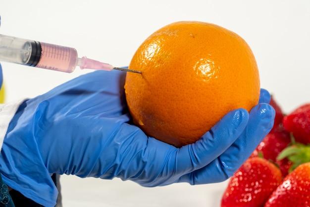 手袋をした女性は、果物や野菜の注射器の遺伝子組み換えを使用しています Premium写真