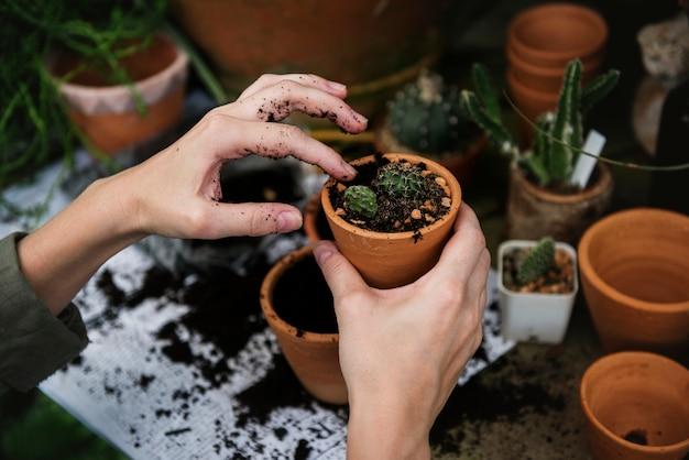 Donna che lavora in un negozio di giardinaggio Foto Gratuite