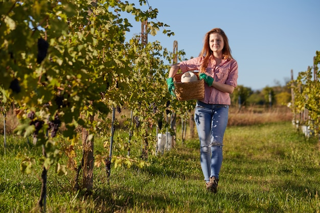 Woman working in a vineyard Premium Photo